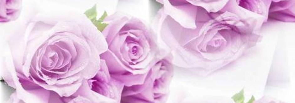 Купить дешево лепестки роз в спб дешево