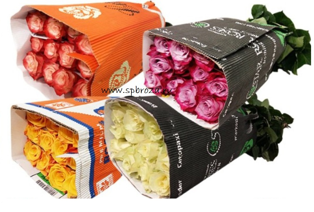 Купить цветы в спб дешево со склада в розницу